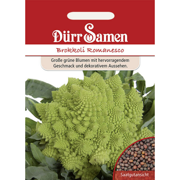 Brokkoli Romanesco